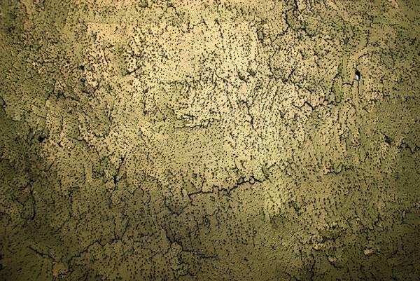 cbenoiton_rdv_glissement-temps-detailld