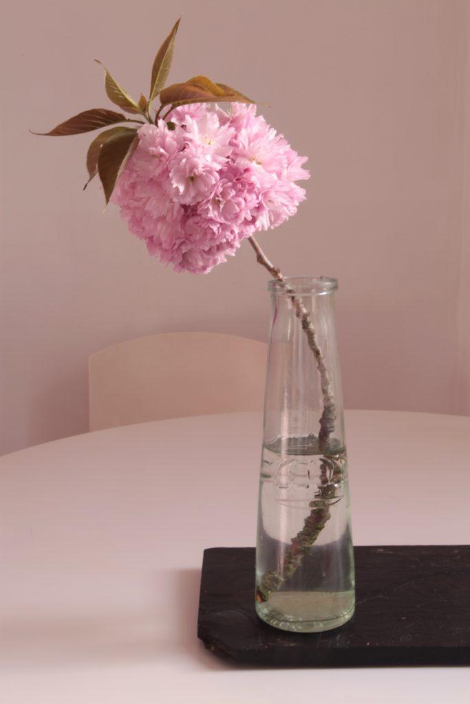 fleur-du-3-bd-daviers-carte-postale